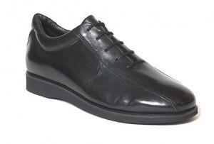 card dealer shoe